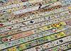 La zi pe Metropotam - Record la pictura - 3,6 km