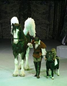 circul globus secretele elfilor