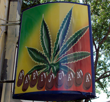 Marijuana Coffee Shop