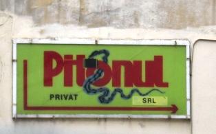 pitonul