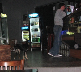 deko dog