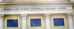 Locul saptamanii - Muzeul Antipa