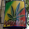 Cronici Terase din Romania - Bar: Marijuana Coffee Shop