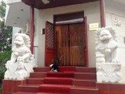 Cronici Restaurante din Romania - Beijing, restaurantul chinezesc cu doi lei si doua pisici