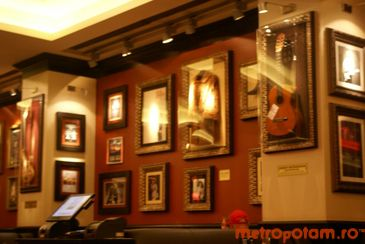 Hard Rock Cafe 2013