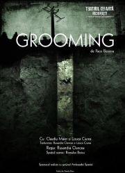 Piese de teatru din Bucuresti - Grooming