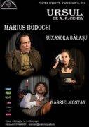 Piese de teatru din Bucuresti - Ursul