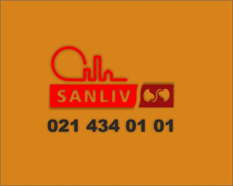 Pensiunea Sanliv