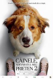 Cinema - A Dog's Journey