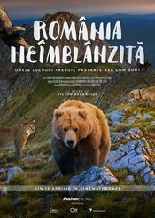 Cinema - Romania neimblanzita