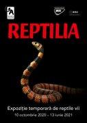 Reptilia-noua expozitie temporara de la Muzeul Antipa!