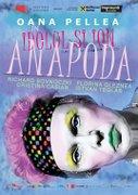 Idolul si Ion Anapoda