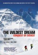 The Wildest Dream (2010)
