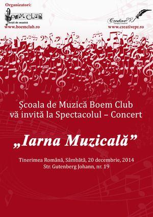 Concerte - Iarna Muzicala