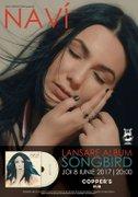 NAVI - Songbird