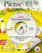 Picnic Vinyl, Rum, Tapas & Wine