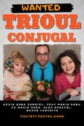 Piese-de-teatru din Romania - Trioul conjugal