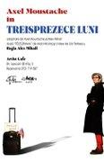 Piese de teatru din Bucuresti - Treisprezece luni