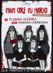 Piese-de-teatru din Romania - Cinci ore cu Mario