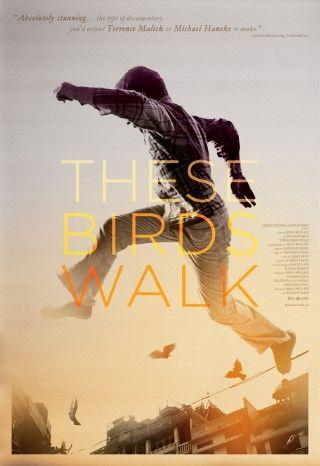 These Birds Walk (2013)