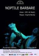 Piese de teatru din Bucuresti - Noptile Barbare