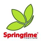 Springtime Izvor