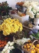 Fresh Market - Targ de produse bio si produse naturale