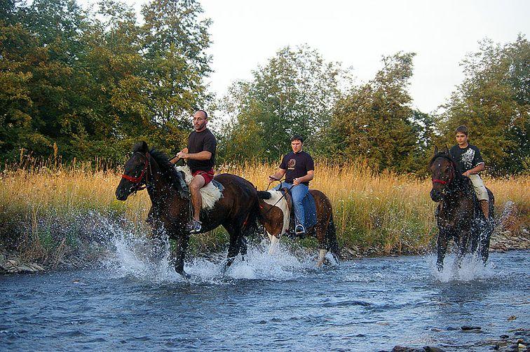 Excursii pe cai si echitatie in muntii Romaniei