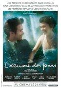 Spuma zilelor (L'ecume des Jours) (2013)