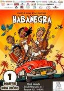 Concerte din Bucuresti - Habanegra - concert de muzica latino-americana