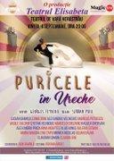 Piese de teatru din Bucuresti - Puricele in ureche