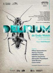 Piese de teatru din Bucuresti - Delirium