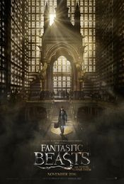 Cinema - Fantastic Beasts and Where to Find Them