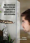 Expozitii - Cu sange rece - Expozitia temporara de reptile vii
