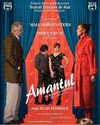 Piese de teatru din Bucuresti - Amantul