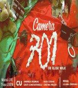 Piese de teatru - Camera 701