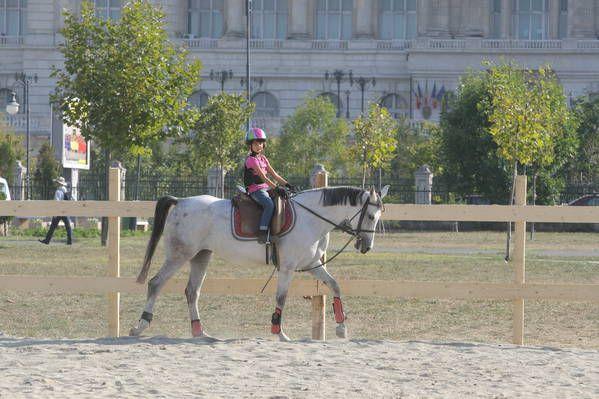 Alte evenimente - Pe cai la Izvor