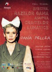 Piese de teatru din Bucuresti - Efectul razelor gamma asupra craitelor lunatice