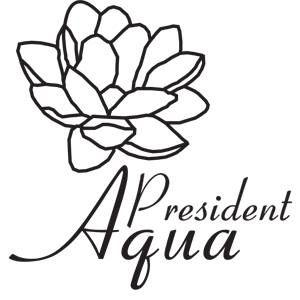 Aqua Park President