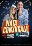 Piese de teatru din Bucuresti - Viata conjugala (a)normala