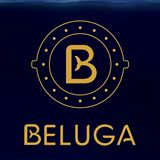 BELUGA Music & Cocktails