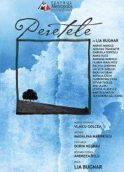Piese de teatru din Bucuresti - Peretele