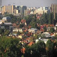Utile - Cetatenii din Cotroceni isi fac singuri dreptate: cer Primariei sectorului 5 sa inlocuiasca arborii uscati din cartier