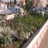 Utile - Primul acoperis verde din Capitala, pe terasa cantinei Grivita