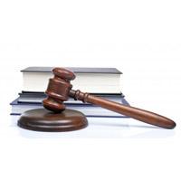 Societate - Cum se fac legile in Romania - care sunt pasii si procedura de adoptare a unei legi