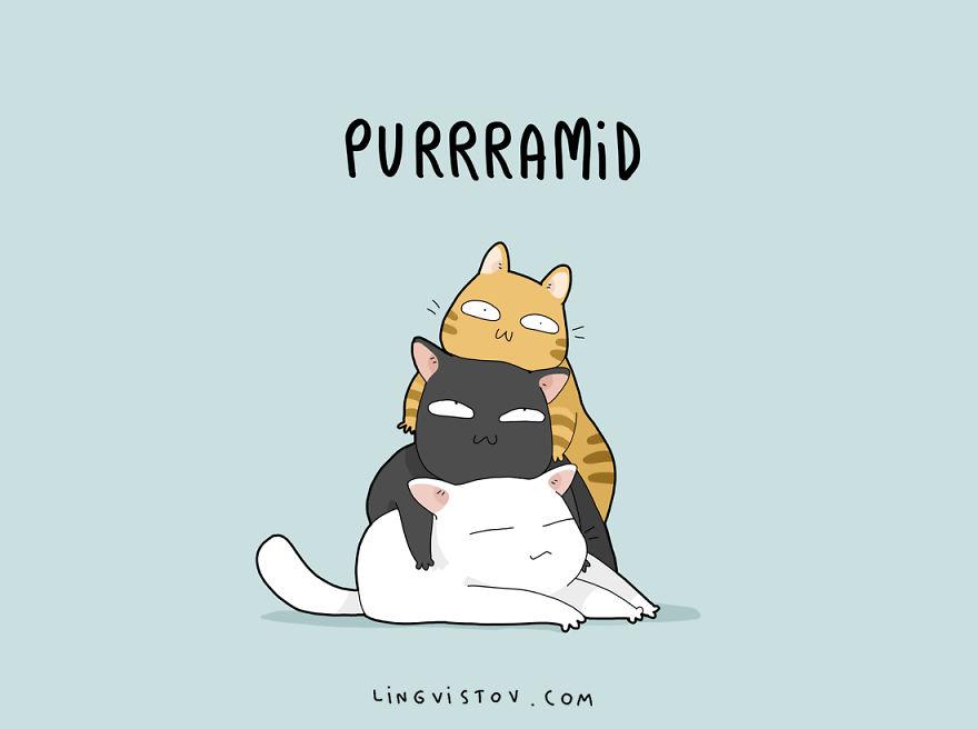 cat-puns-007-57a9d04e446c2__880.jpg
