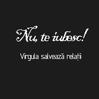 Mihai Zinculescu, liceanul care ne ajuta sa scriem corect si sa alegem destept