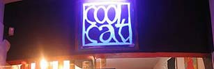 Cronici Terase din Romania - Chillout de seara la Coolcat