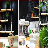 Cronici Restaurante din Romania - THERAPY – Bistro&cafenea terapeutica; hrana pentru minte, trup si suflet (P)