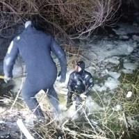 Un barbat a fost gasit mort in Balta Pipera
